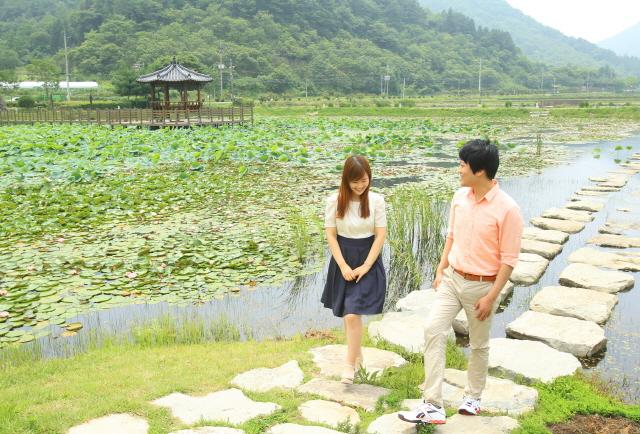 크기변환_고성_상리연꽃공원(6)