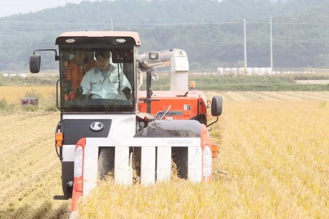 10월19일 이정곤 부군수가 가공용벼를 직접 수확하고 있다 (2).JPG