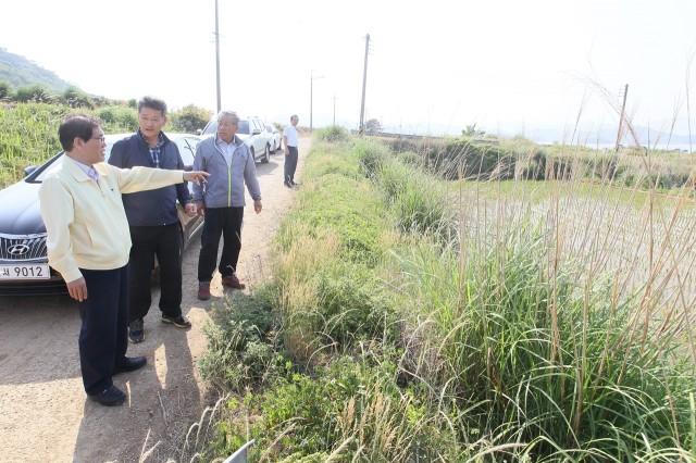 6월2일 농작물 가뭄 피해 현장점검 (1).JPG