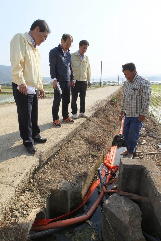 6월2일 농작물 가뭄 피해 현장점검 (2).JPG