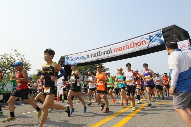 11월 11일 전국 마라톤동호인 고성 당항만 달리다!(지난해 대회사진) (1).JPG