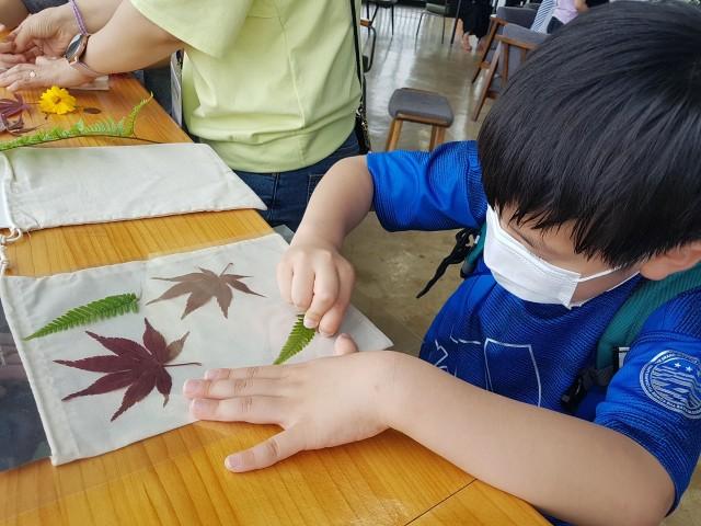 고성공룡박물관 가족 프로그램_풀꽃염색 체험.jpg