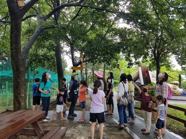 고성공룡박물관 가족 프로그램_나무 해설-2.jpg