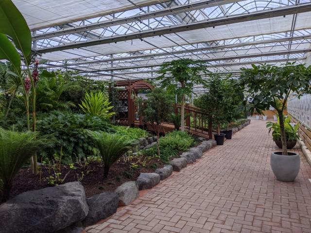 4-3 고성군에 전국 최초 공기정화식물원이 있다.jpg